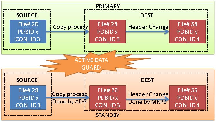 ADG_PDB_copy