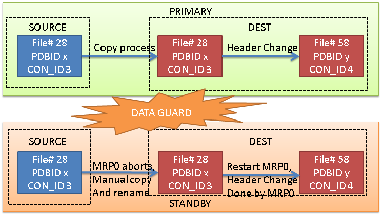 NOADG_PDB_copy